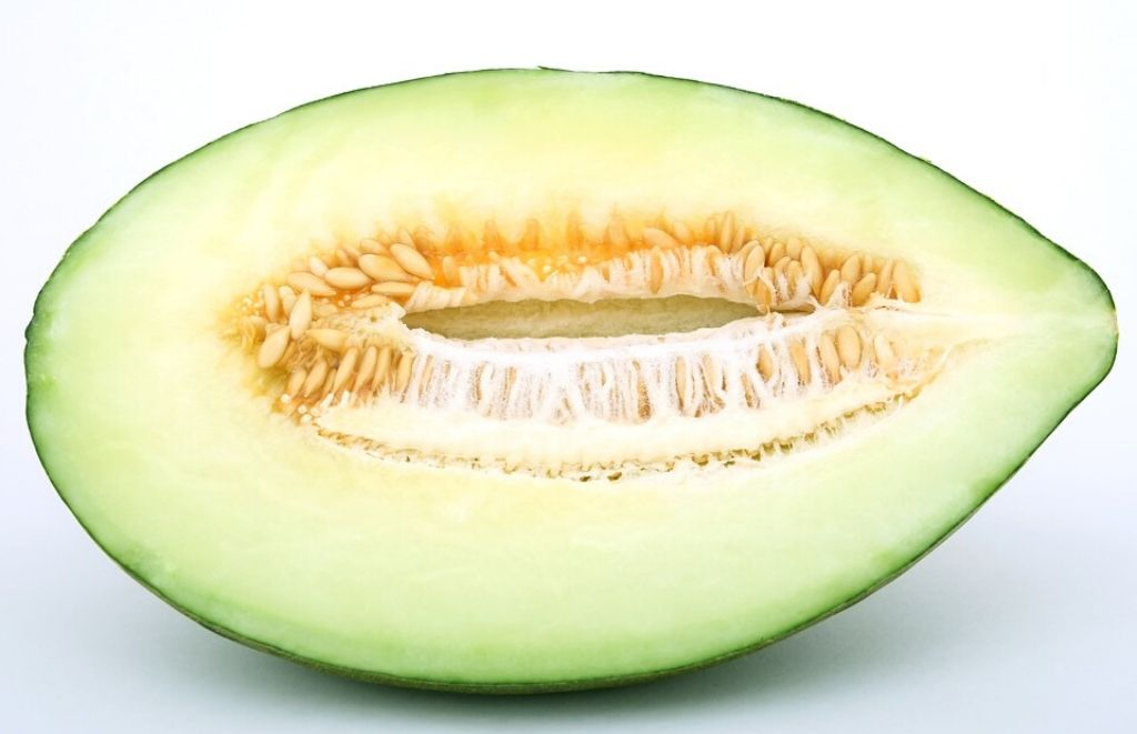 Melon partido